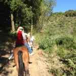 horse riding amalfi coast