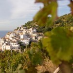 Amalfi Coast wine tour: tasting the Nectar of the Gods